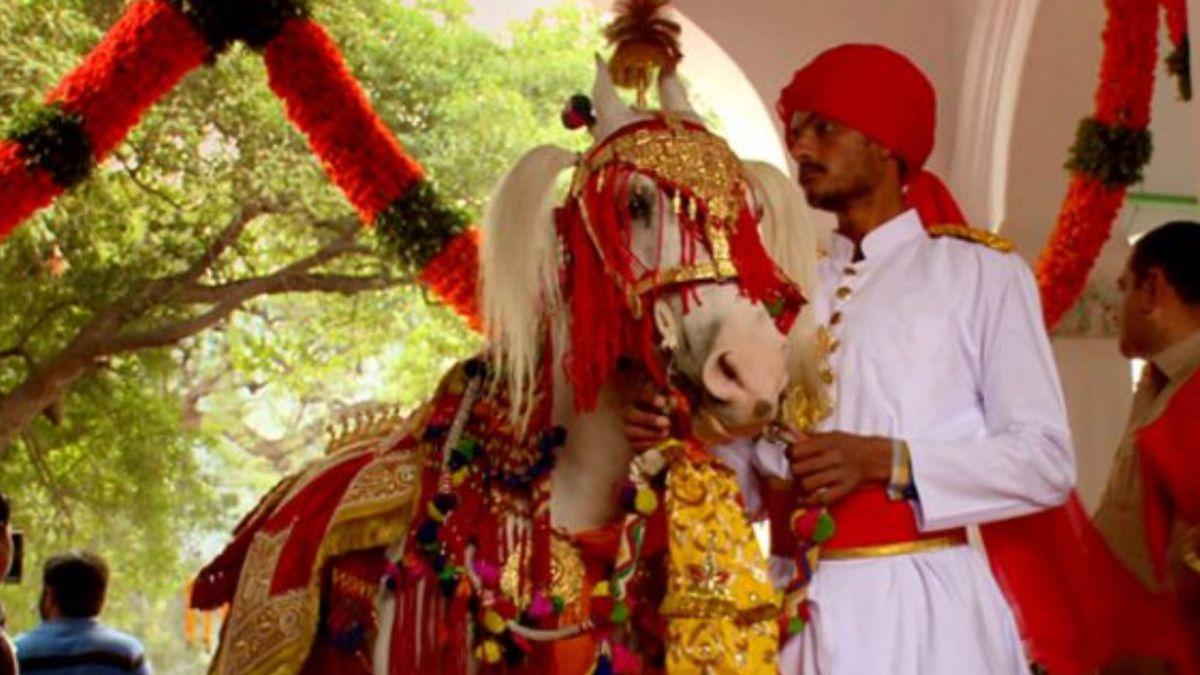El fastuoso estilo de vida de las familias reales de India