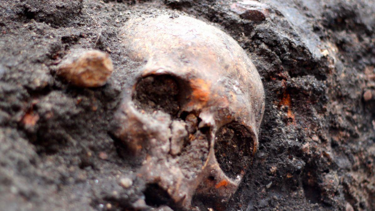 Hallan más de 3 mil esqueletos humanos enterrados en Londres