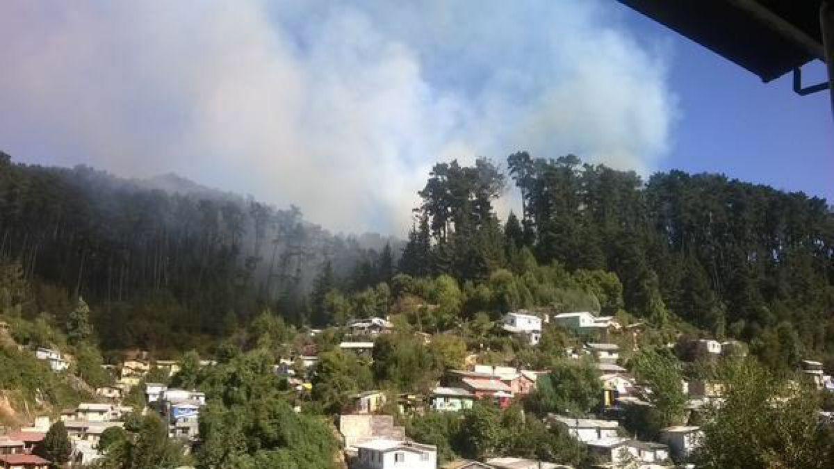 Incendio forestal amenaza a viviendas en cerro Caracol de Concepción