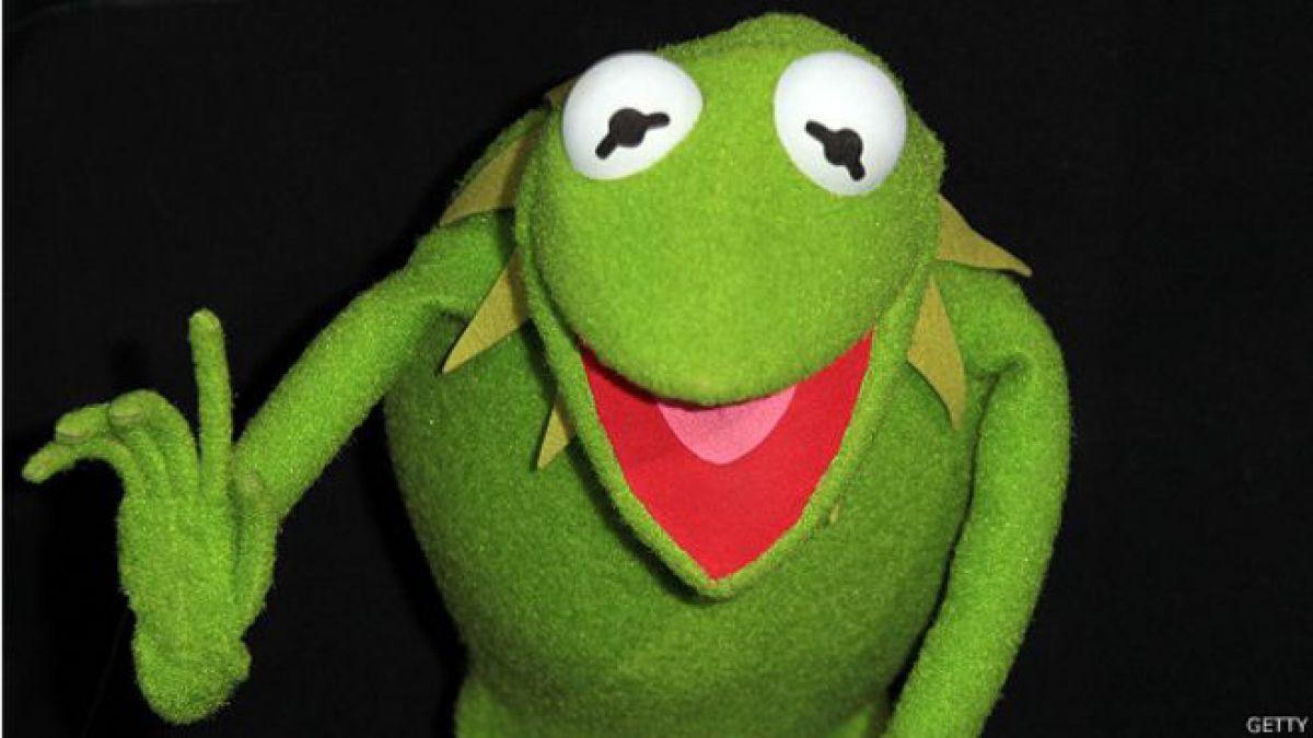 conoce los secretos de la rana ren233 en su cumplea241os
