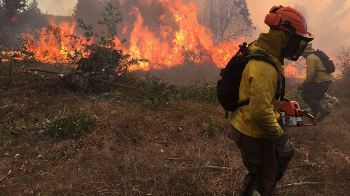 Gobierno decreta estado de catástrofe para zonas afectadas — Incendios forestales