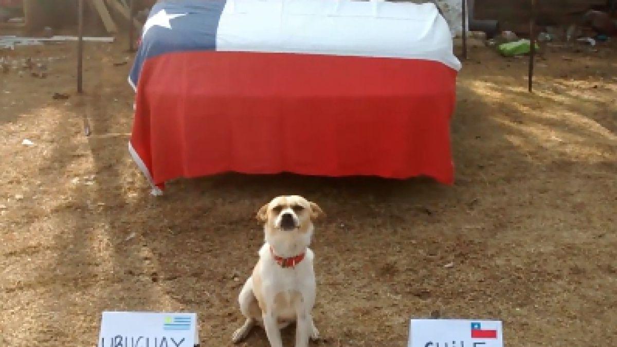 [VIDEO] ¿Quién ganará el duelo Chile-Uruguay? Revisa la predicción de Bototo