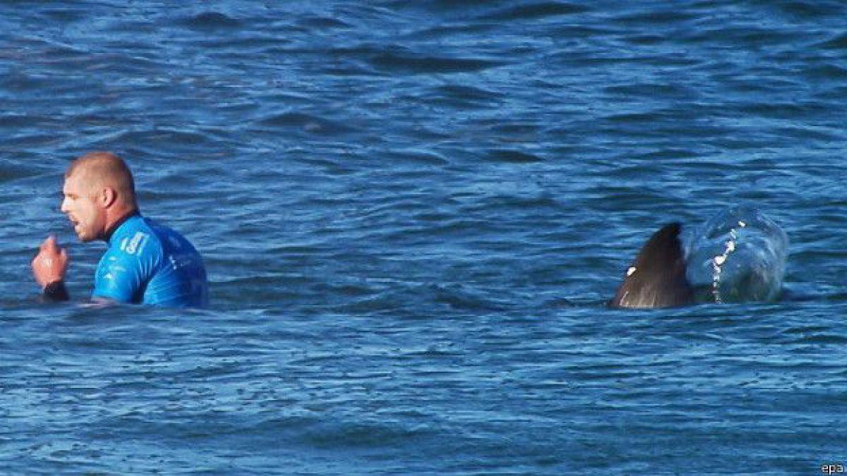 Surfista atacado por tiburón volverá a la tabla: Darle la espalda al surf no sería buena elección