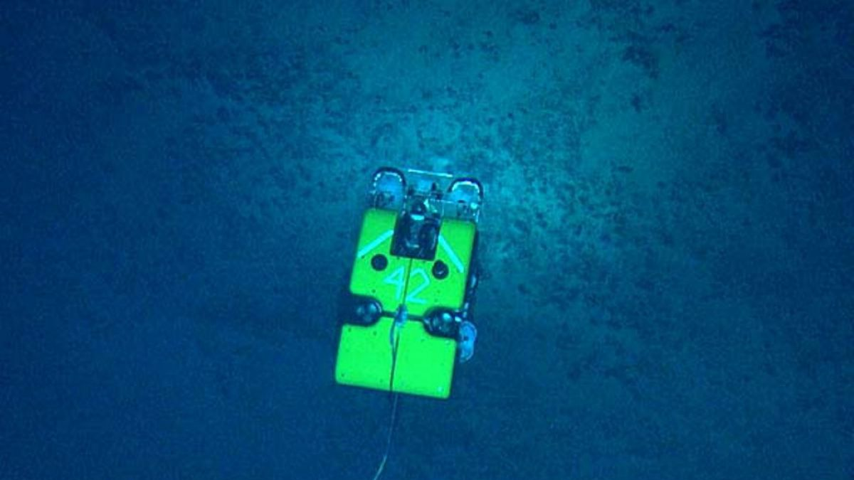 La expedición Okeanos Explorer transmite en vivo por Internet