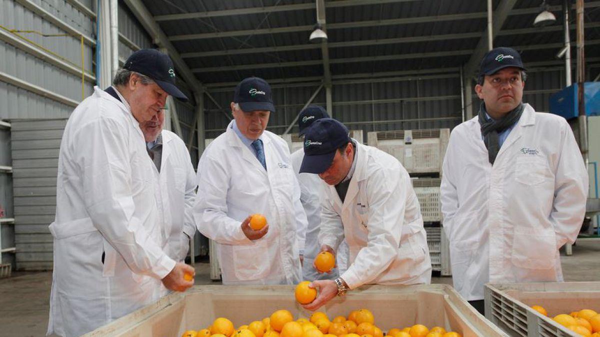 China levanta cuarentena para Coquimbo, Valparaíso y Metropolitana por mosca de la fruta