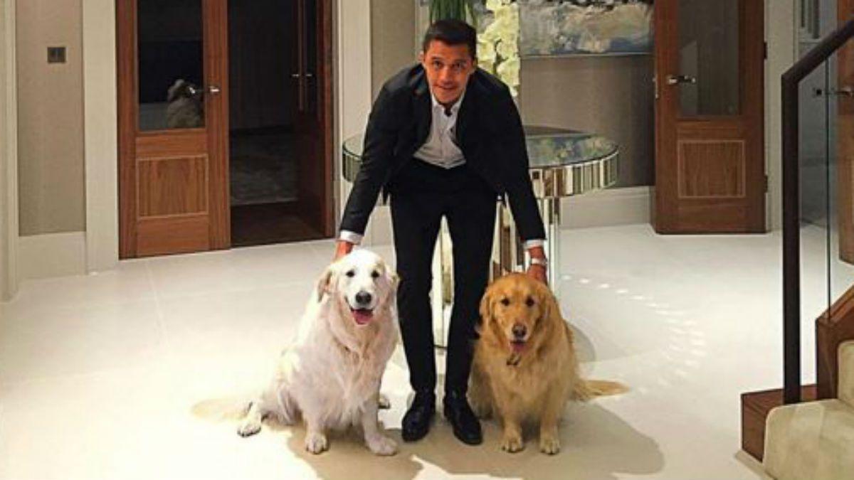 [FOTO] Alexis Sánchez posa con sus perros en su llegada a Londres