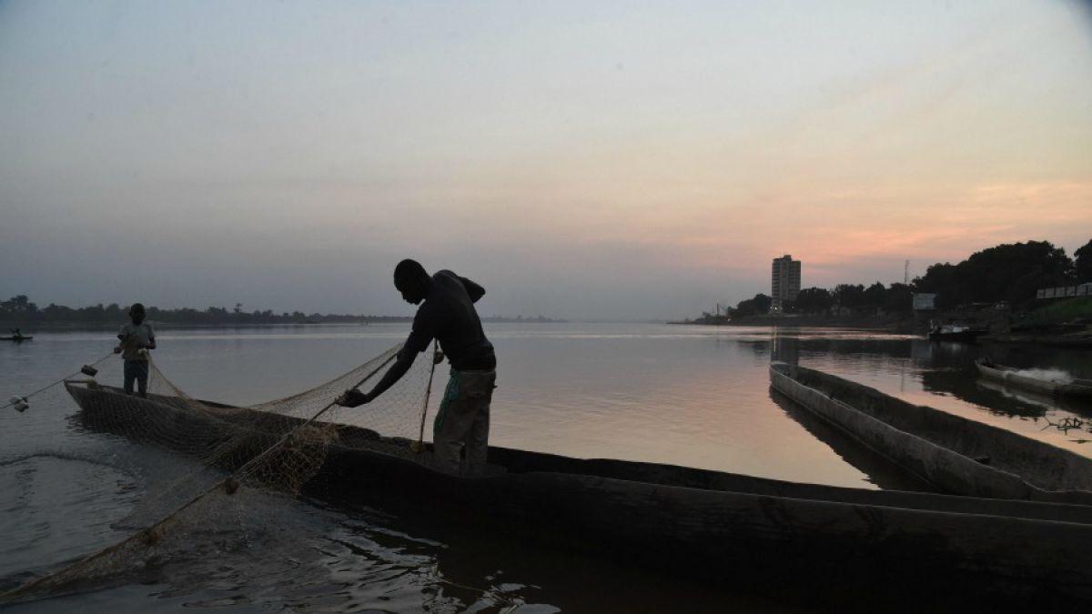 Más de 30 millones de toneladas de peces se extraen al año en forma clandestina