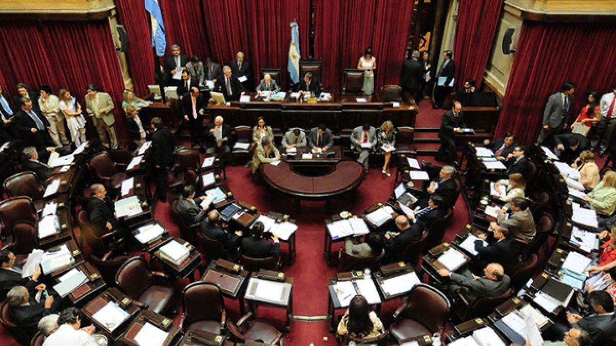 Resultado de imagen para senado argentina