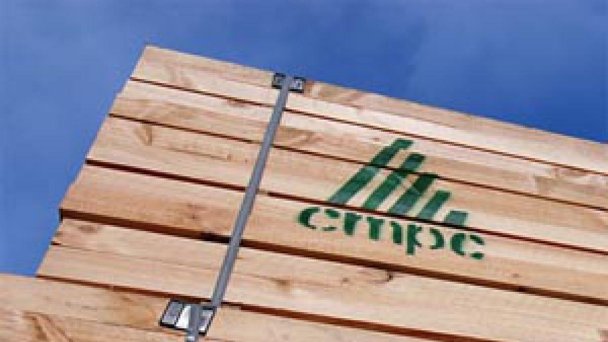 Abogado de CMPC descarta coacción contra SCA en colusión de papel confort