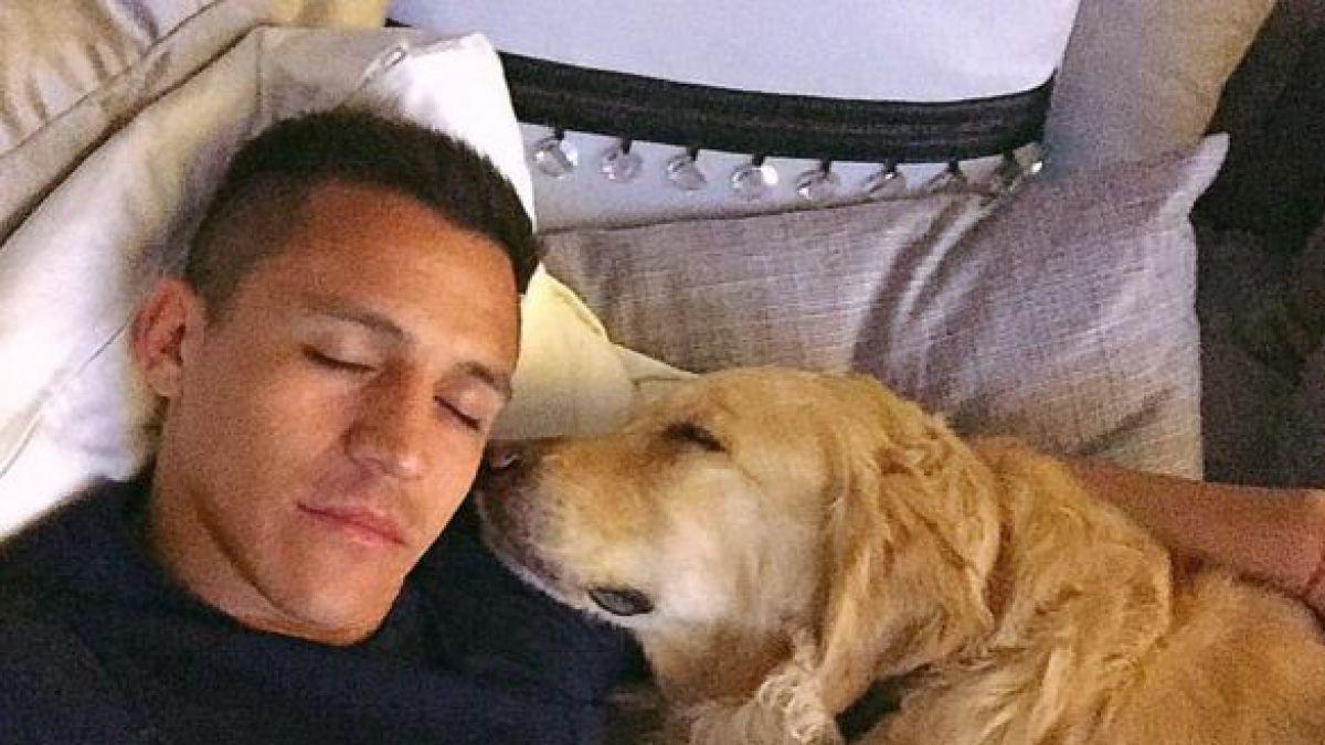 [VIDEO] El enigmático homenaje de Alexis a sus perros vía Instagram