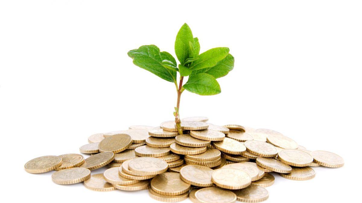 Abren postulación a Capital Semilla y Abeja: revisa cómo recibir hasta $3.500.000