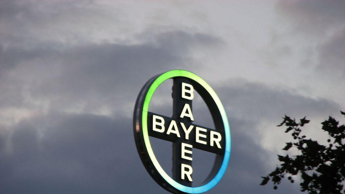 Bayer confirma conversaciones con Monsanto con miras a una fusión