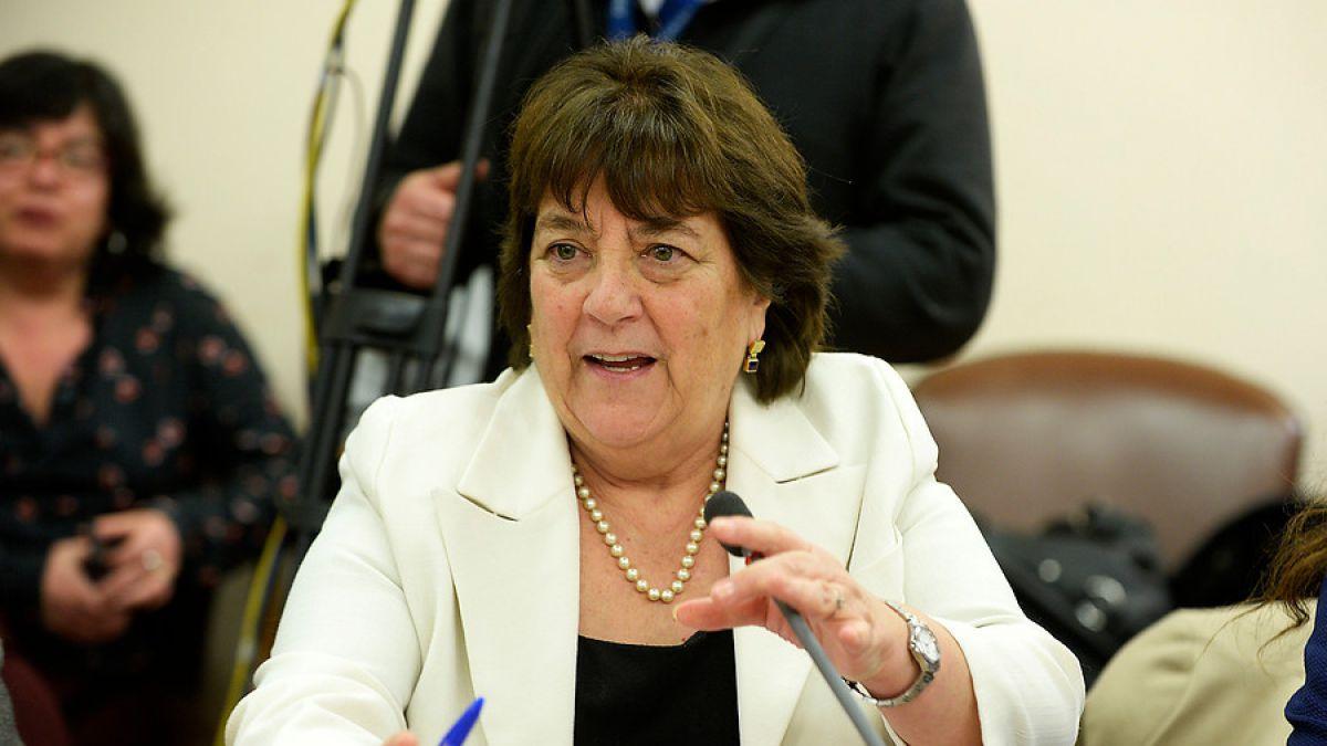 Delpiano expone en comisión de Educación