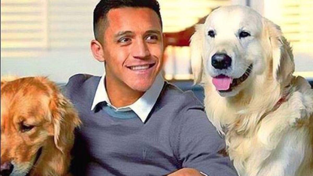 ¡Ternura total! Alexis Sanchez vuelve a dedicar conmovedor video a sus perros