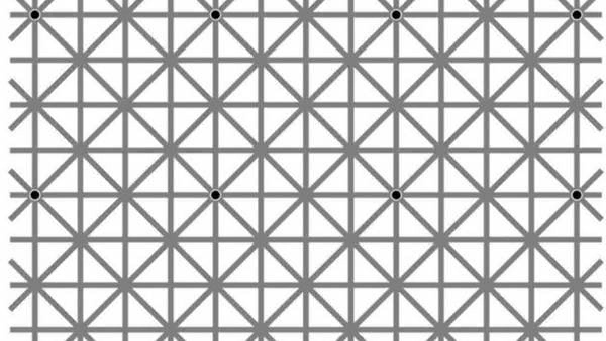 Internet enloquece con esta nueva ilusión óptica