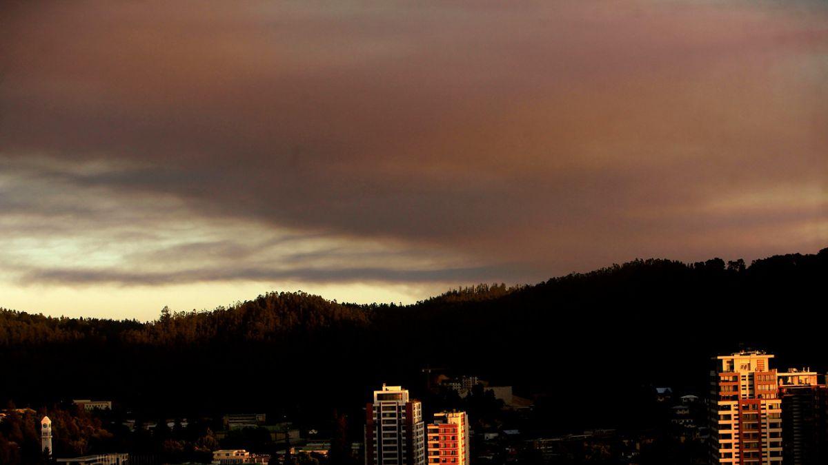 Onemi: se registran 17 incendios forestales activos a nivel nacional