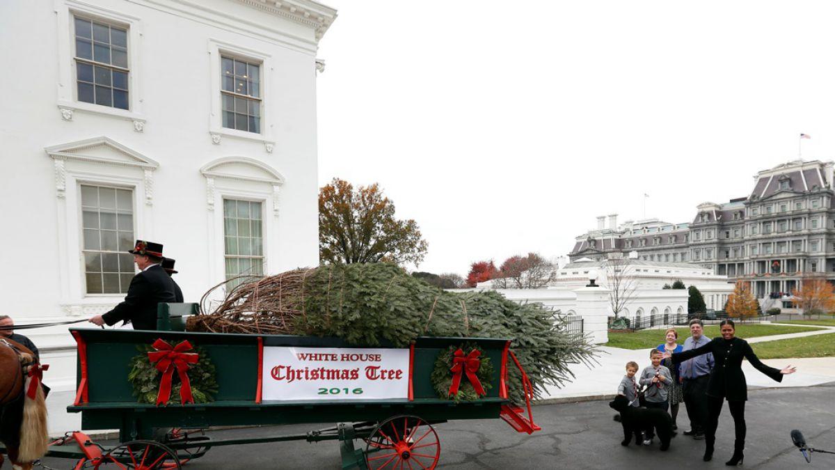 michelle obama recibe su ltimo rbol de navidad en la casa blanca