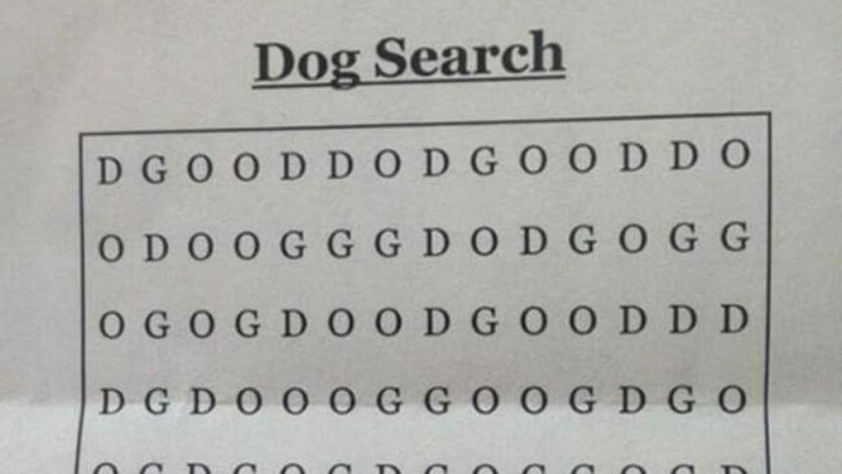 Desafío viral: ¿puedes encontrar la palabra DOG en esta sopa de letras?