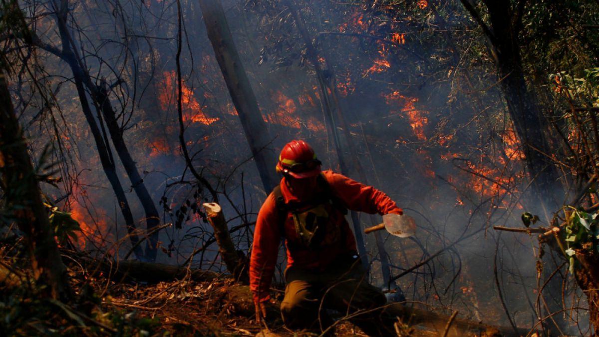 Alerta Roja en Valparaíso por incendio cercano a reserva nacional