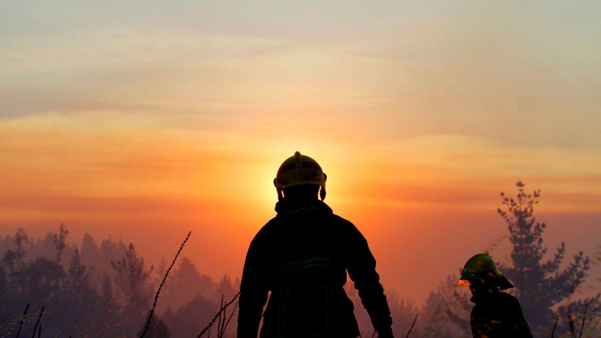 Confirman muerte de segundo funcionario de Bomberos que trabajaba en incendios forestales