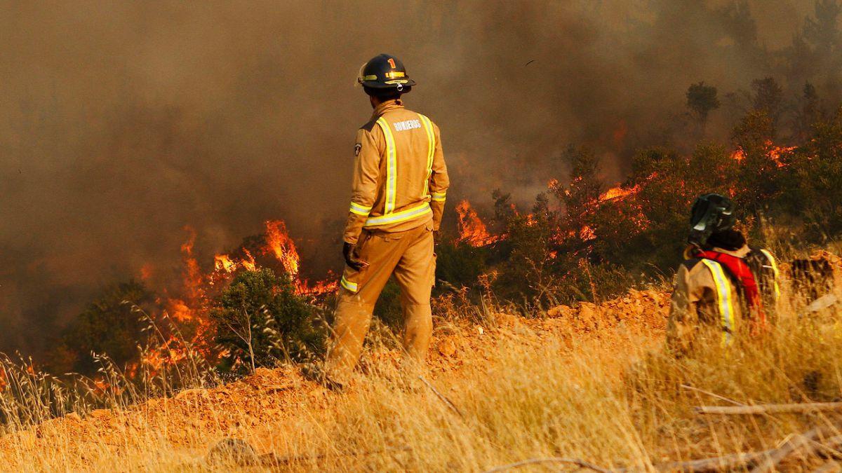 Onemi decretó Alerta Roja por incendio forestal en Melipilla