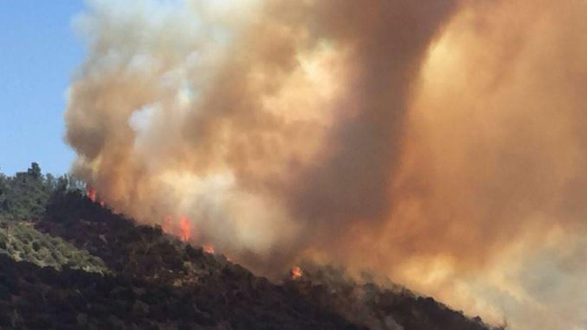 Incendios forestales afectan a Viña del Mar y Valparaíso