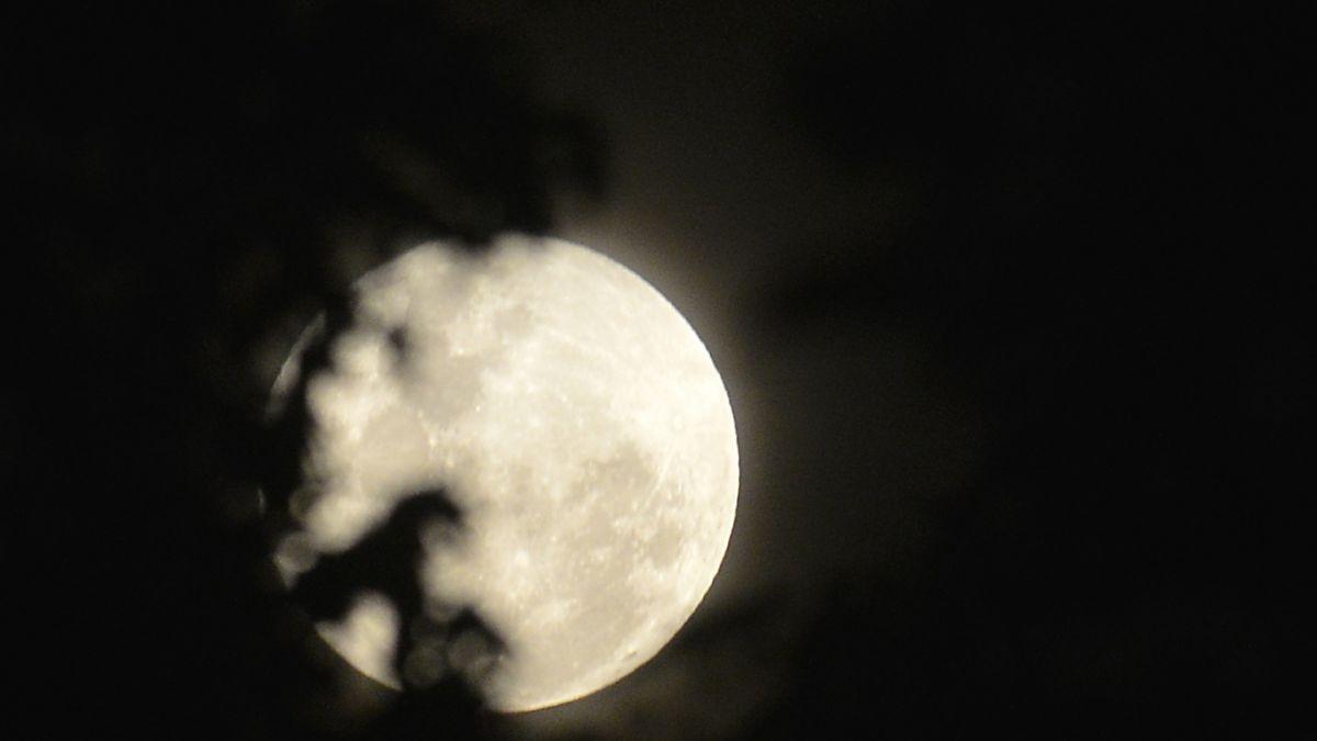Qu es la luna llena rosa que se ver esta noche en chile for Que luna hay esta noche