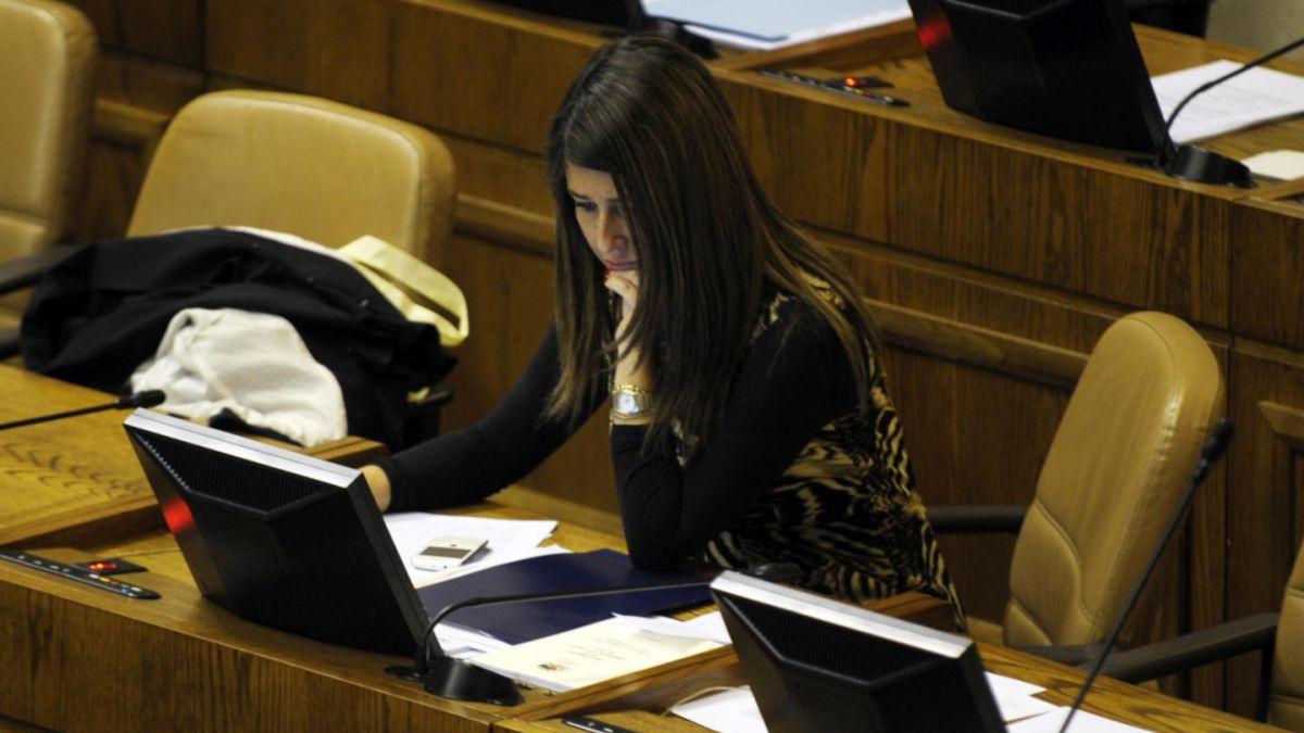 Consejo de Defensa del Estado se querella contra diputada Claudia Nogueira