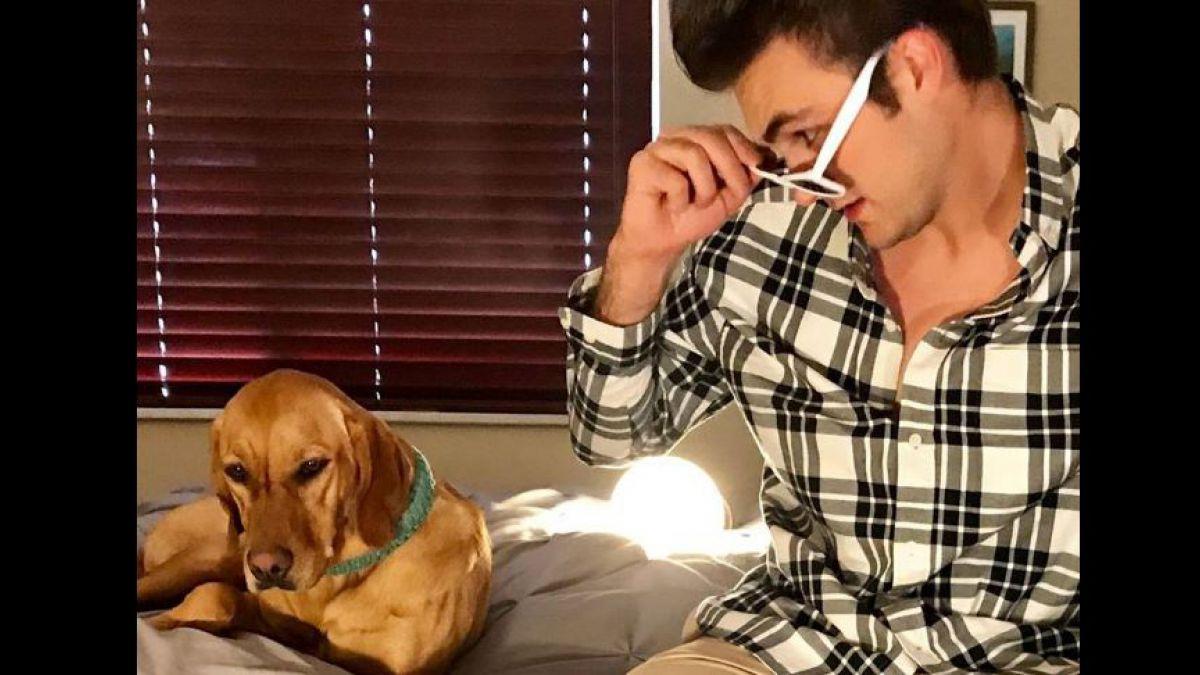 Un veterinario le canta a los cachorros nerviosos antes de las cirugías