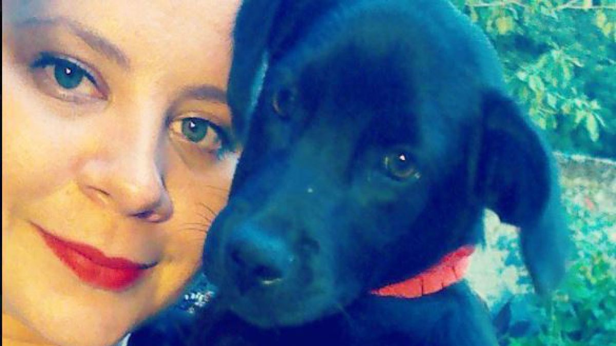 El tierno gesto de un perrito: compartió manta con animal abandonado