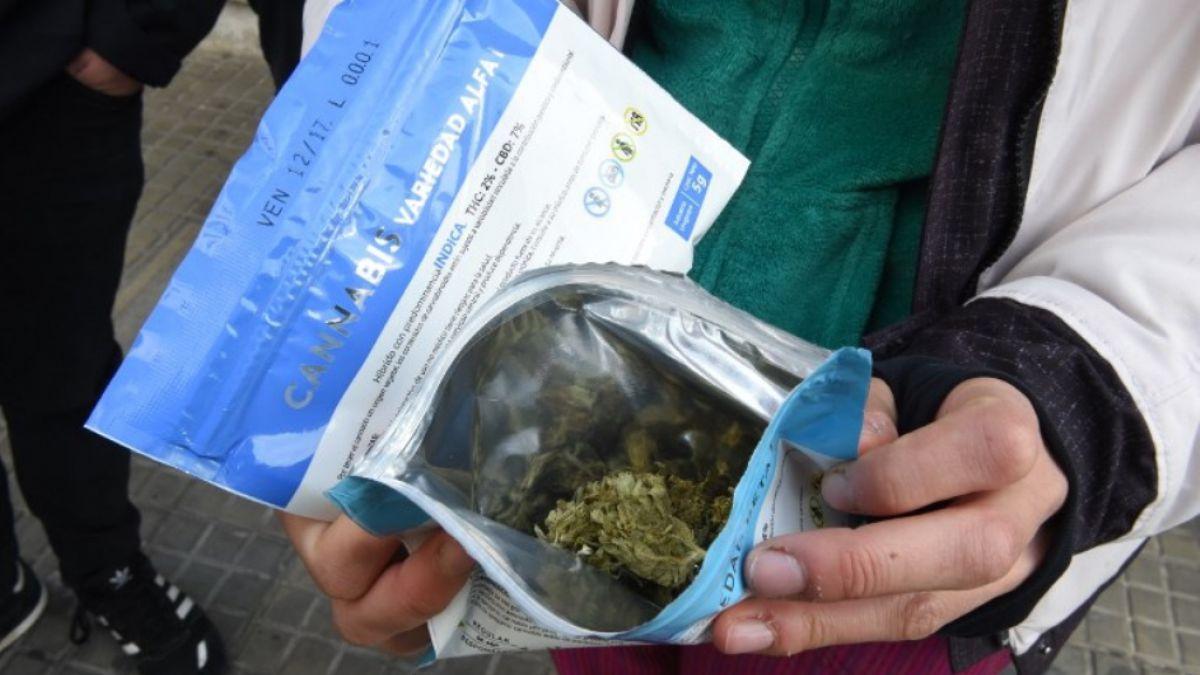 Problemas con la venta de marihuana en Uruguay: habilitarán locales que no sean farmacias