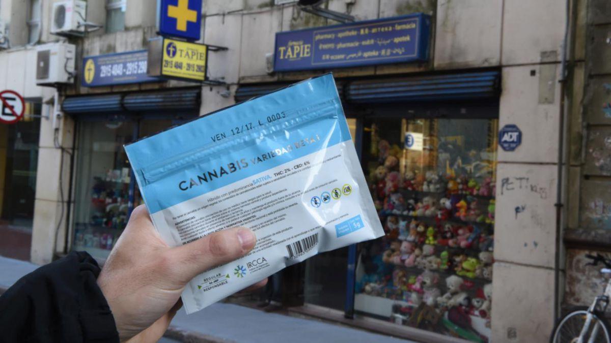 Historias| cómo es comprar y consumir marihuana legal en Uruguay