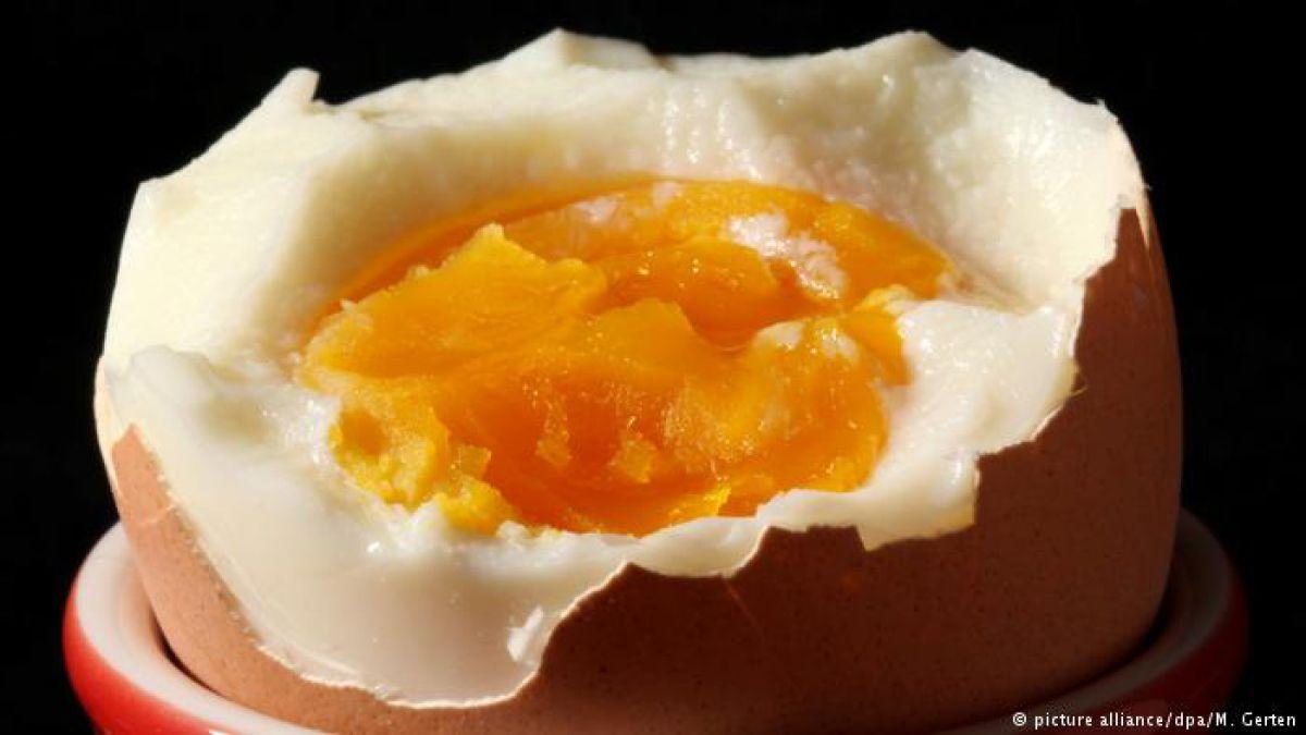 Bélgica sabía sobre contaminación de huevos desde junio