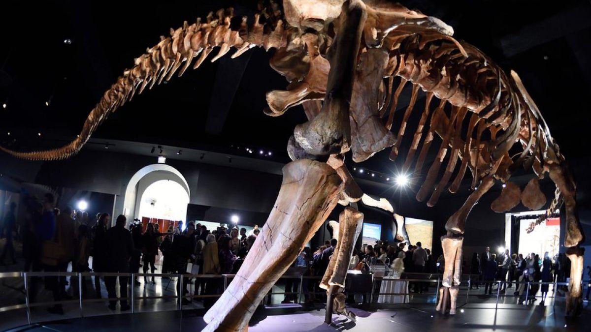 Descuben al dinosaurio más grande del mundo: el Patagotitán