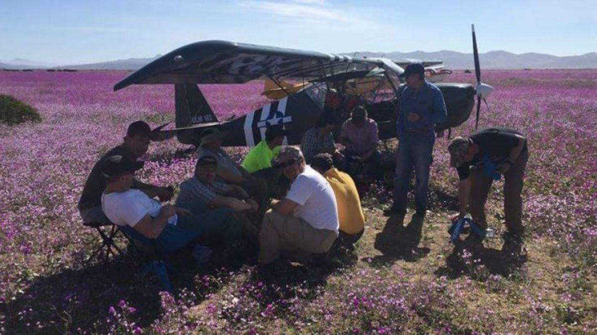 Conaf evalúa acciones legales por aterrizaje de avionetas en desierto florido