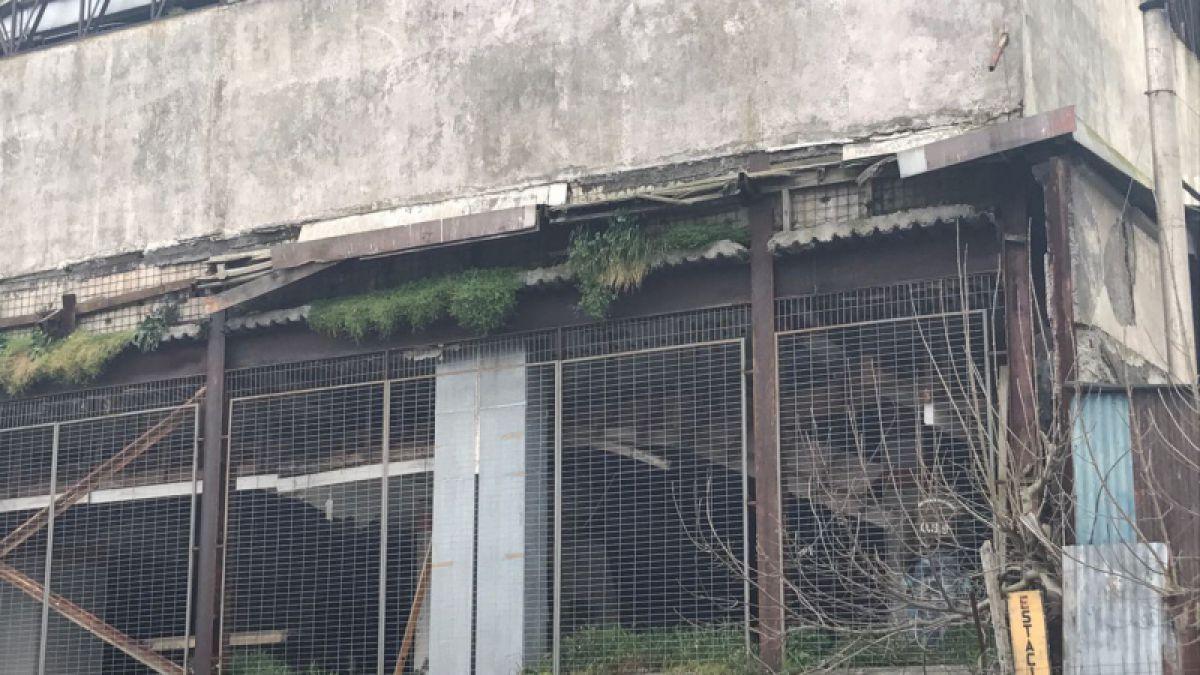 Carabineros descubre túnel en dirección a bóveda de banco de Talcahuano