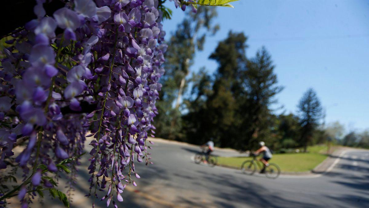 Equinoccio: otoño en el hemisferio norte y primavera en el sur