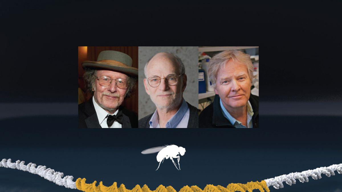 Premio Nobel de Medicina a investigadores del sueño