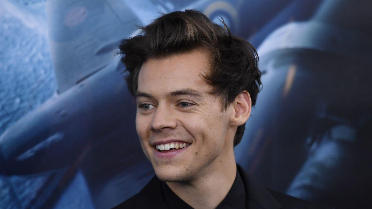 A Harry Styles una fan le toca la entrepierna en concierto