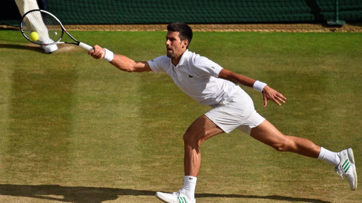 Triunfo de Del Potro saca a Djokovic del top 10 por primera vez en una década