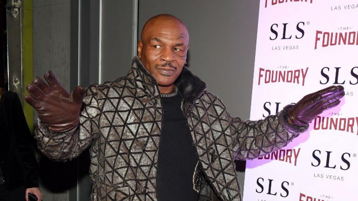 Experto en migración y expulsión de Tyson: Es una señal política