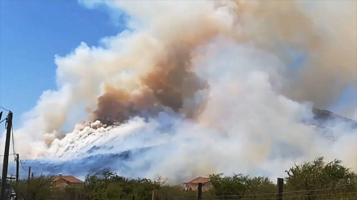 Onemi declara primera alerta roja de la temporada por incendio en Chicureo