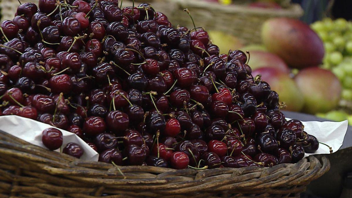 Exportación chilena de frutas muestra baja de 5%
