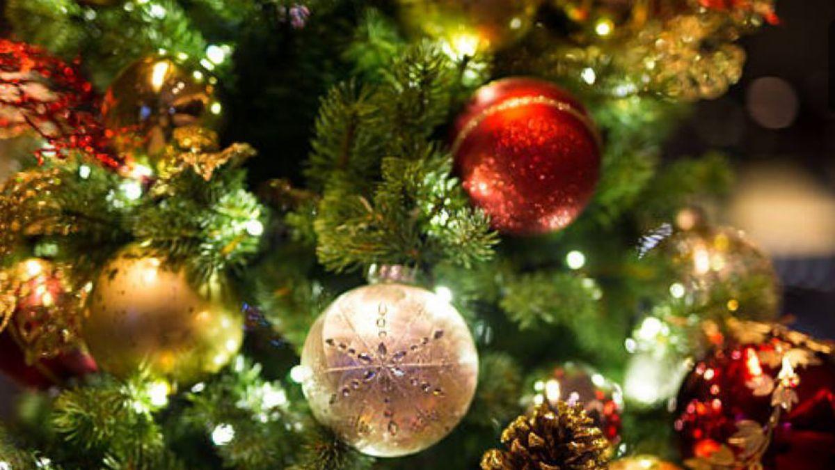 Una abuela decoró su árbol de Navidad y ahora es viral   Tele 13