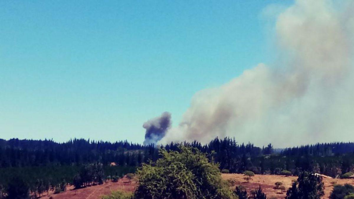 Declaran Alerta Roja para comuna de Portezuelo por incendio forestal