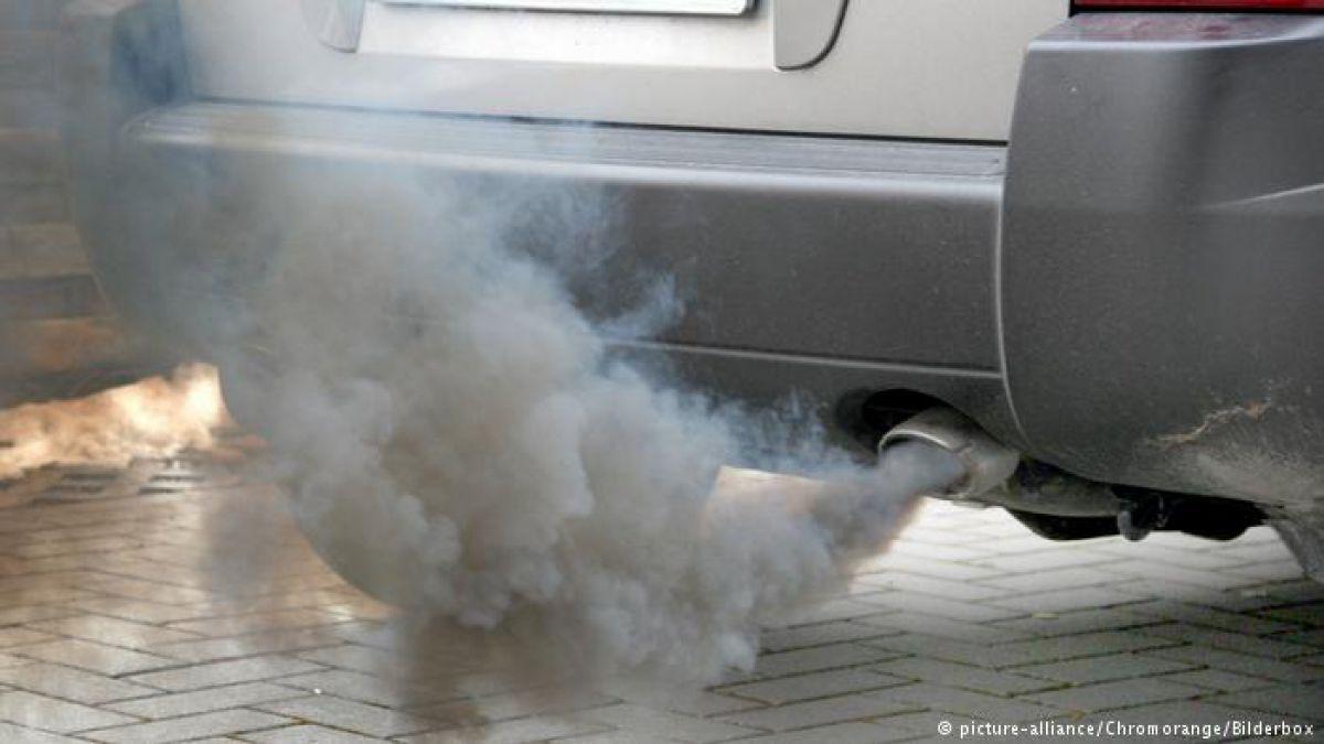 Constructores de coches acusados de probar emisiones con monos y humanos — Alemania