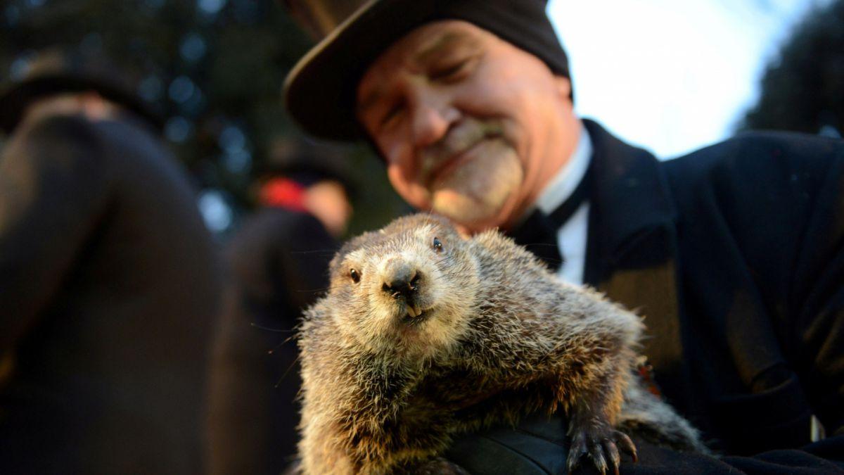 ¡La marmota ha hablado! Habrá seis semanas más de invierno