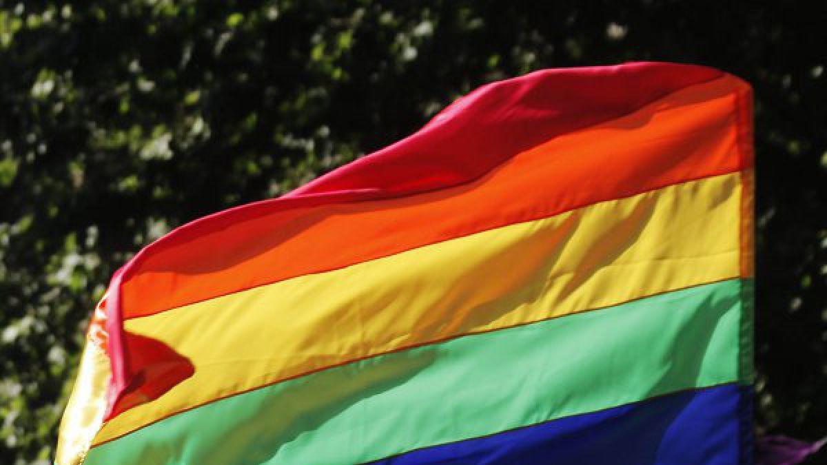 Hoy se conmemora el Día Internacional del Orgullo gay
