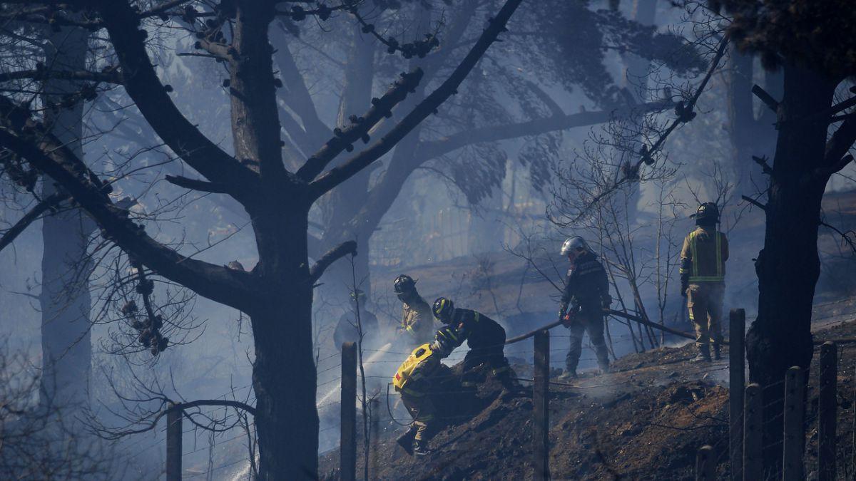 Alerta Roja en Valparaíso por incendio forestal en sector de Laguna Verde