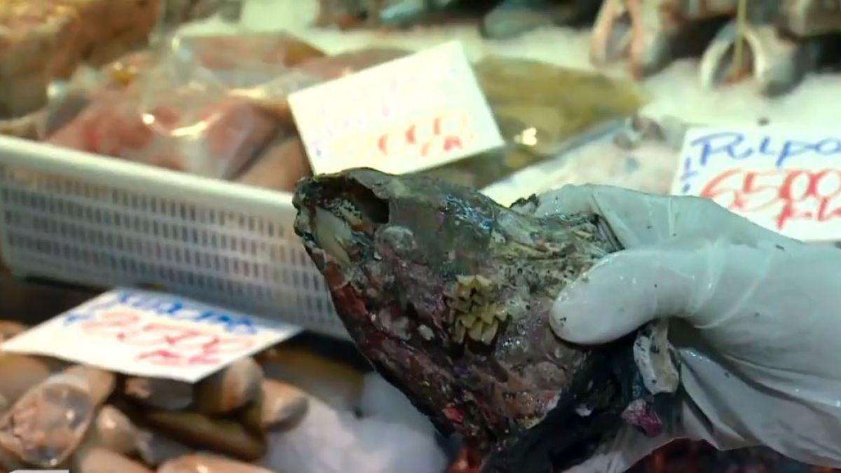 Conoce algunas recomendaciones, si vas a comprar pescados o mariscos